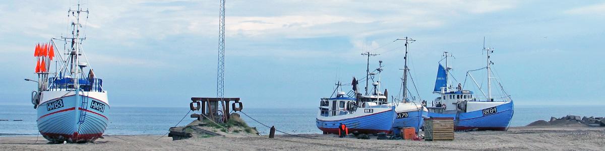 I Fiskehuset går vi meget op i bæredygtigt fiskeri, og vi køber bl.a. fisk fra Thorup Strand og fra små fiskekuttere, der fisker naturskånsomt og lander i Hanstholm