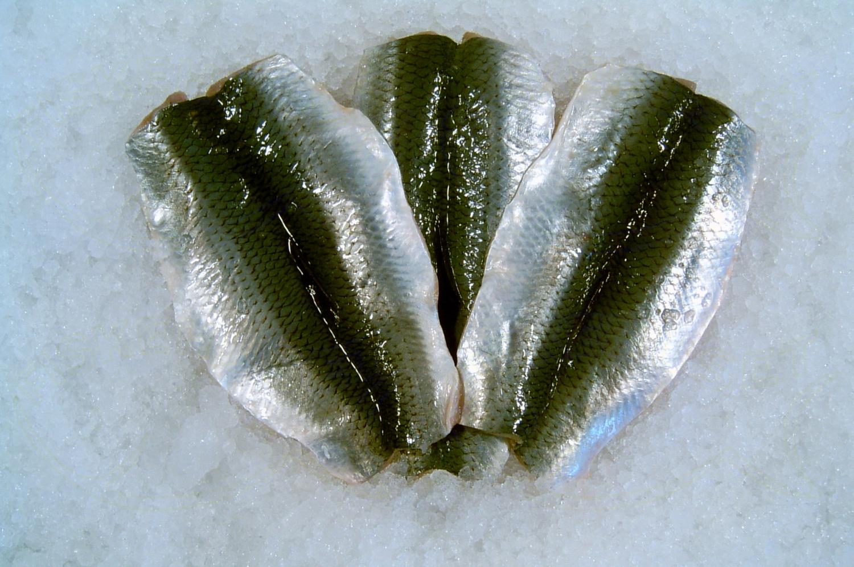 Sildefilet Frost Alt Fersk Fisk Fiskehusets Netbutik